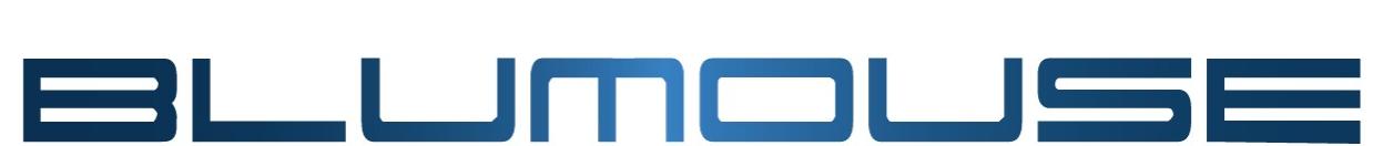 Blumouse Computer Ancona